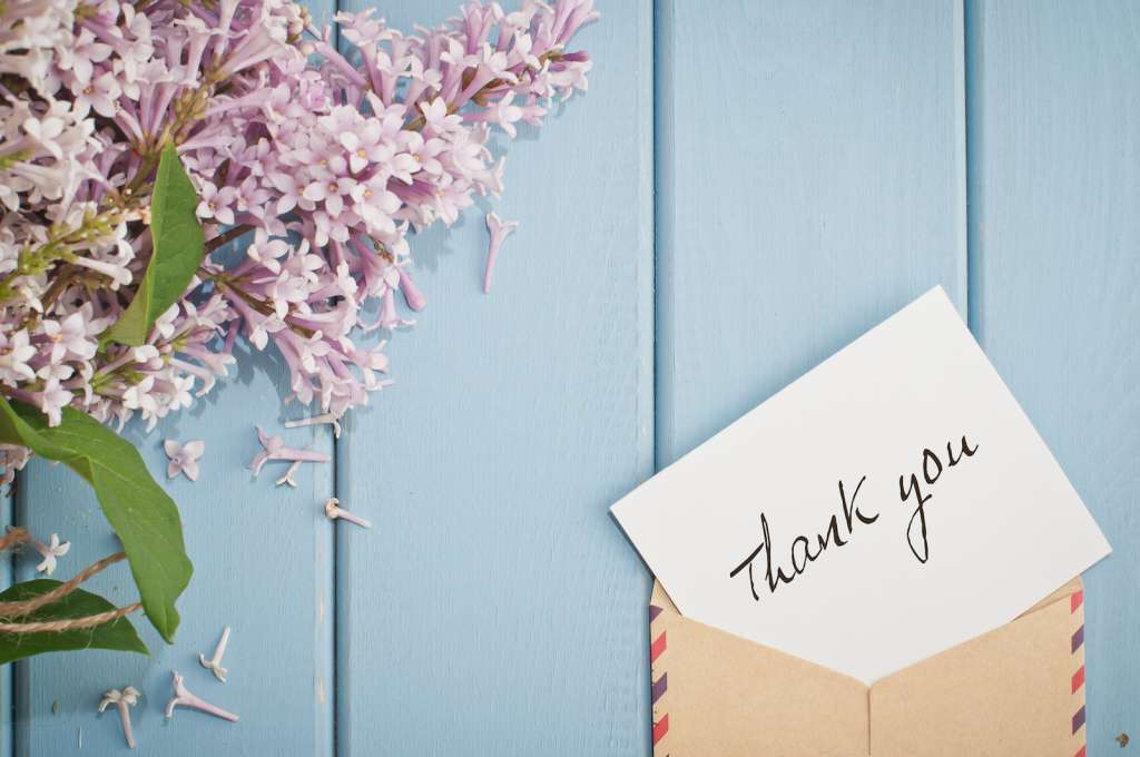 40+ Thank You Quotes to Help You Express Gratitude | TinyPrints